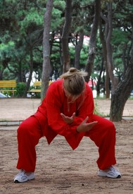 Qigong Workshop 2009 in China